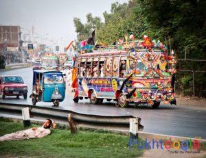 Peshawar Buses